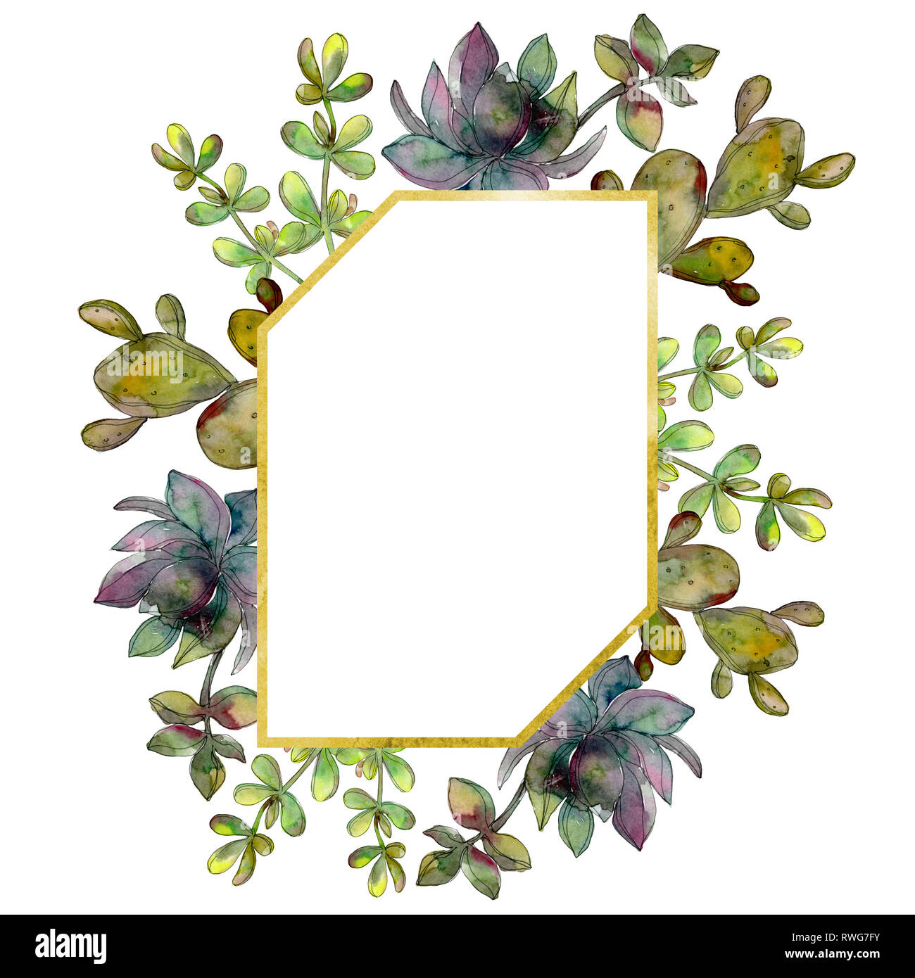 Jungle Botanical Succulent Flower Watercolor Background Illustration Set Frame Border Crystal Ornament Square Stock Photo Alamy