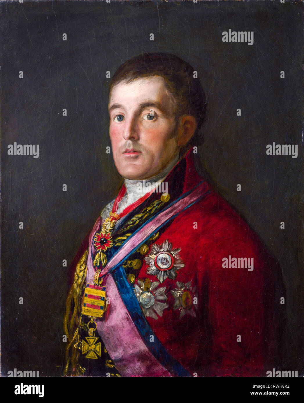 Arthur Wellesley, 1st Duke of Wellington (1769-1852), portrait painting by Francisco Goya, c. 1812-1814 - Stock Image