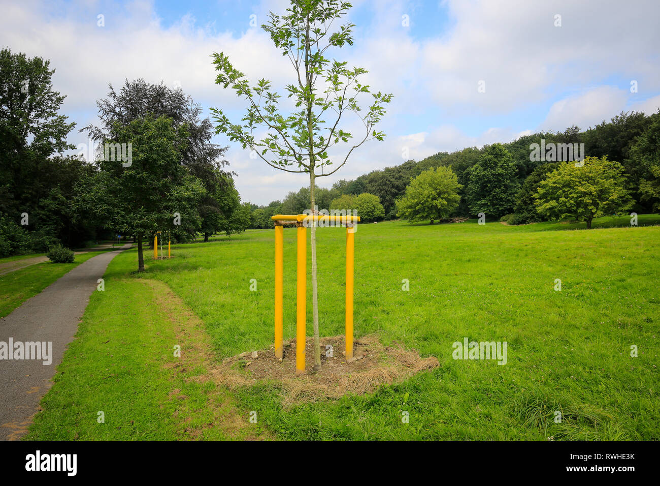 Essen, North Rhine-Westphalia, Ruhr area, Germany - The Hallopark between Stoppenberg and Schonnebeck is one of the oldest green areas in Essen, here  - Stock Image