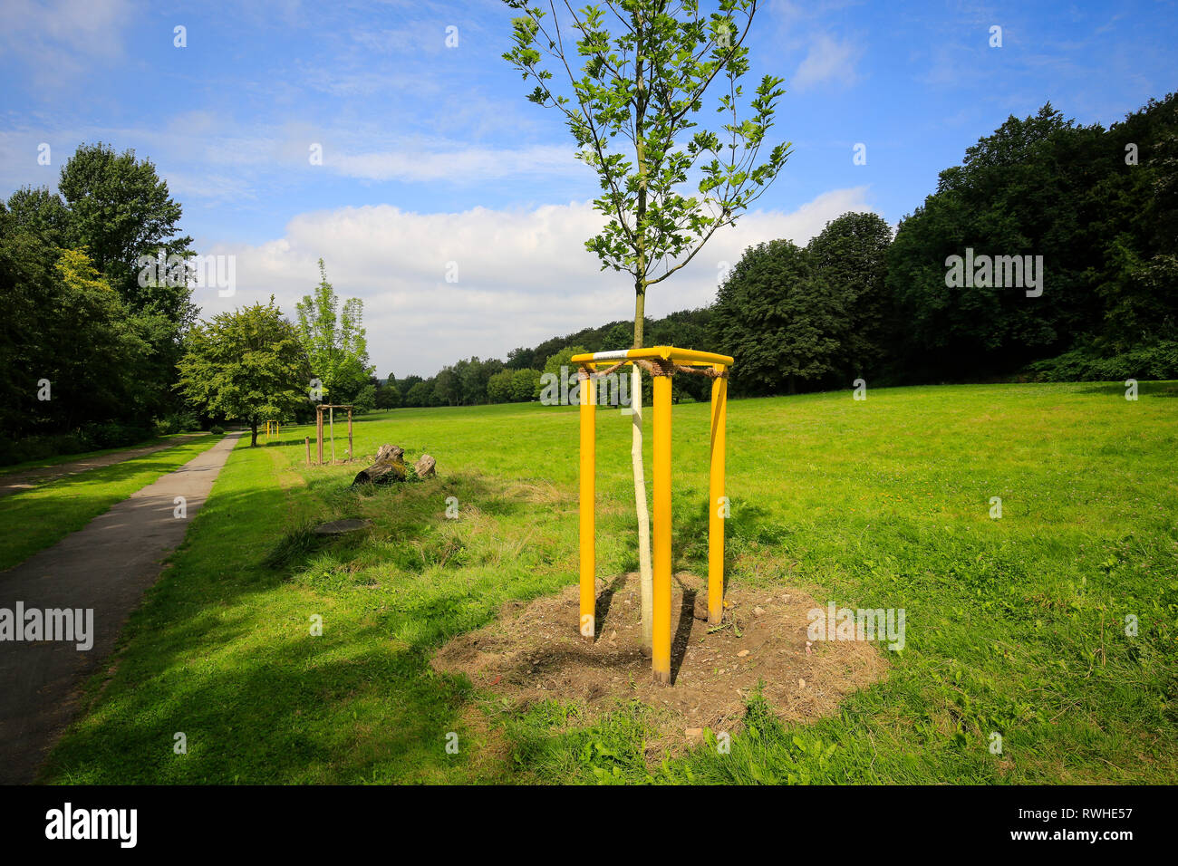 Essen, North Rhine-Westphalia, Ruhr area, Germany - The Hallopark between Stoppenberg and Schonnebeck is one of the oldest green areas in Essen, here  Stock Photo