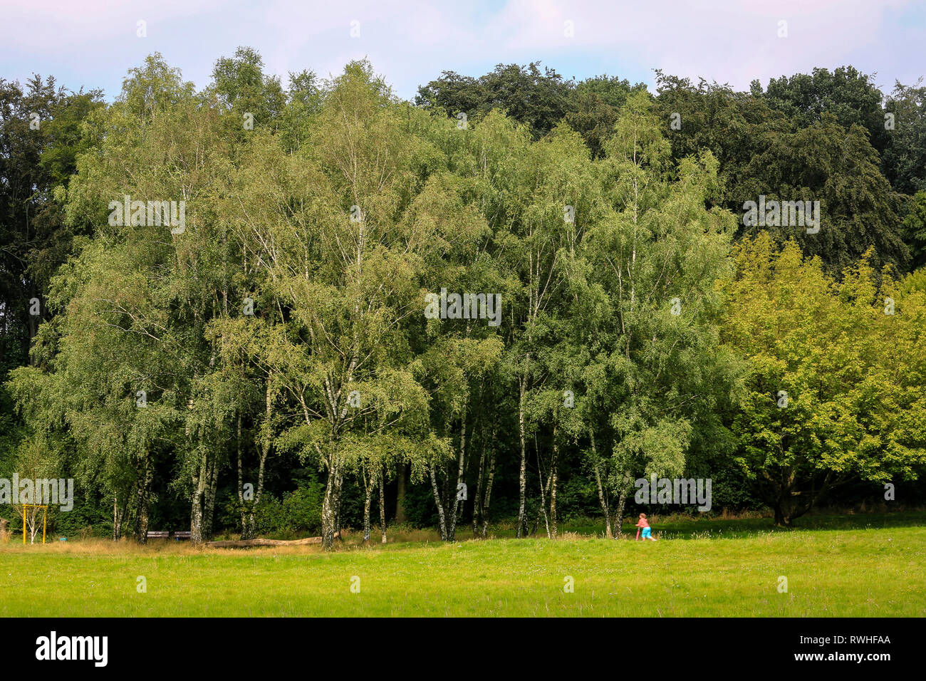 Essen, North Rhine-Westphalia, Ruhr area, Germany - The Hallopark between Stoppenberg and Schonnebeck is one of the oldest green areas in Essen, a chi - Stock Image