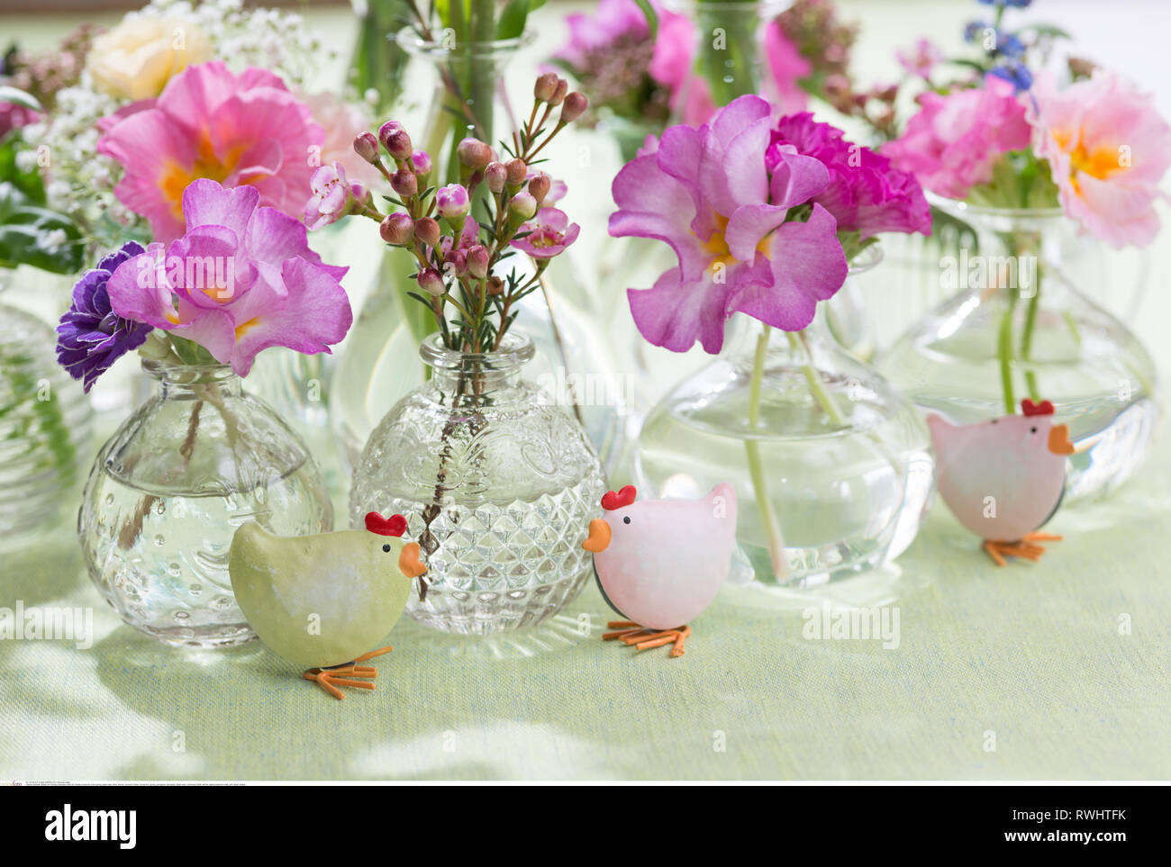 botany, blossom in the spring, glass vase, s, Caution! For Greetingcard-Use / Postcard-Use In German Speaking Countries Certain Restrictions May Apply - Stock Image