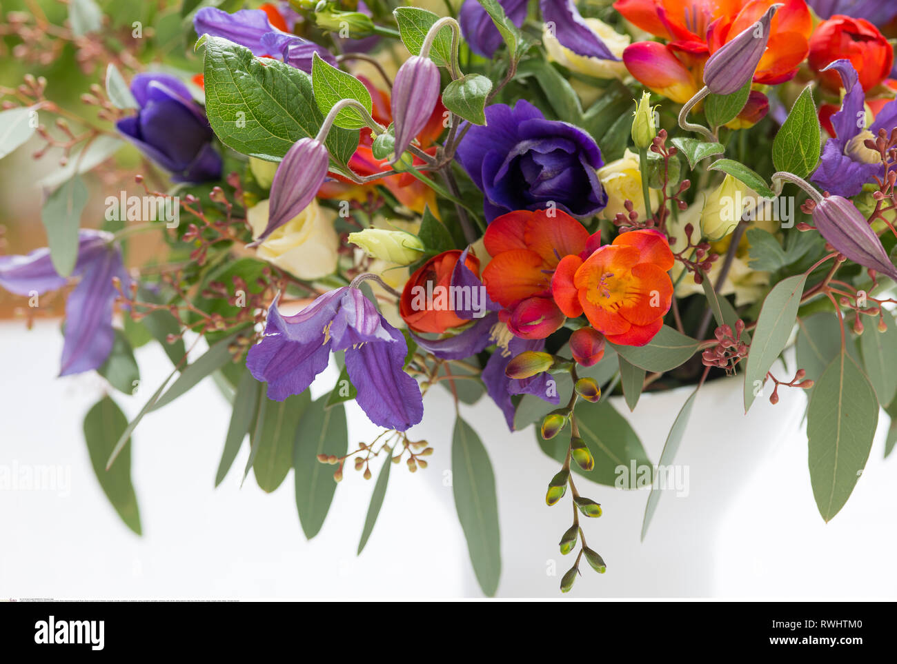 botany, filmier natural flower bouquet, Caution! For Greetingcard-Use / Postcard-Use In German Speaking Countries Certain Restrictions May Apply - Stock Image