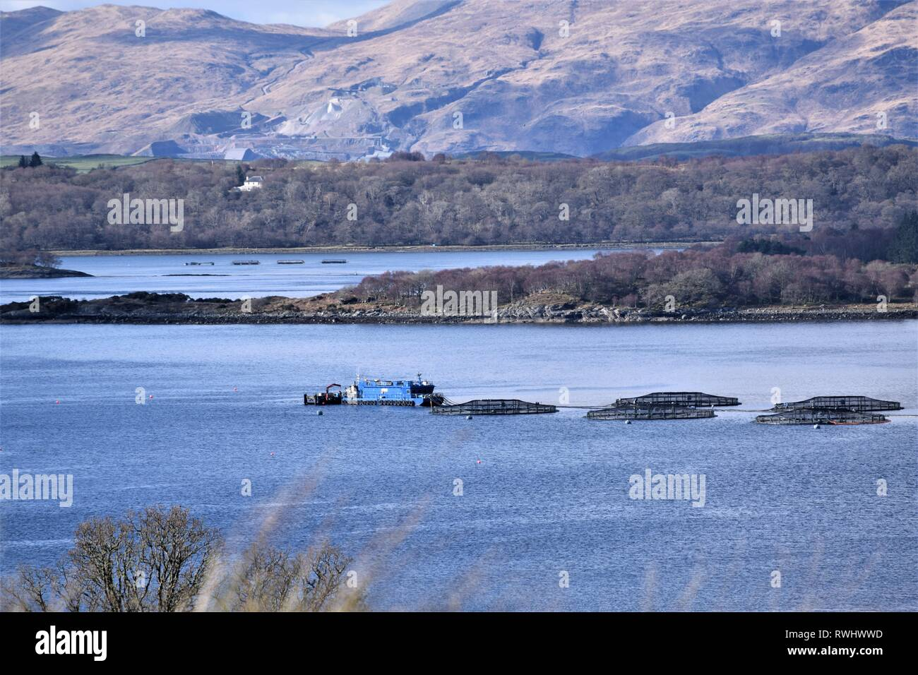 Scottish Sea Farms boat and salmon cages at South Shian with Glensanda Superquarry visible in the background. - Stock Image