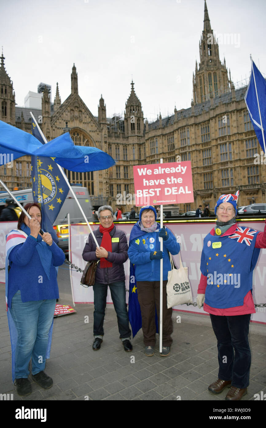 Daily parliamentary protest by SODEM - Stand of Defiance European Movement which was started by Stephen Bray on 2017 in protest at Brexit.  Every day  - Stock Image