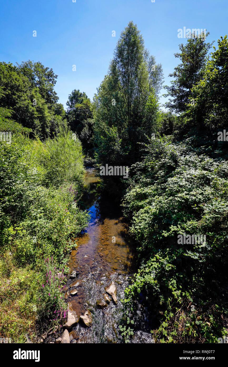 Dortmund, Ruhr area, North Rhine-Westphalia, Germany - Emscher, renaturalized river in Dortmund-Schoenau. The ecological reconstruction of the Emscher Stock Photo