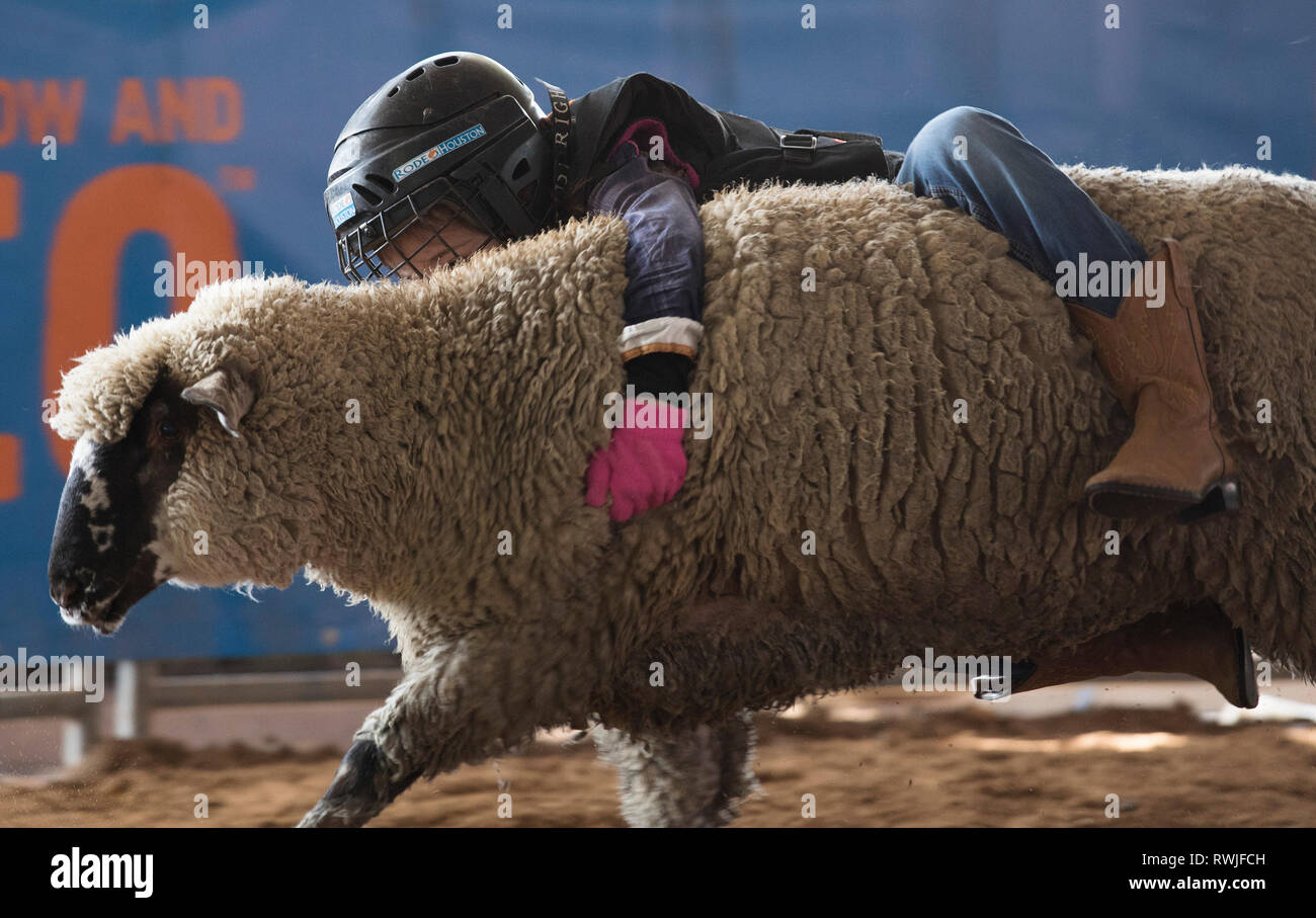 Mutton Bustin Stock Photos & Mutton Bustin Stock Images - Alamy