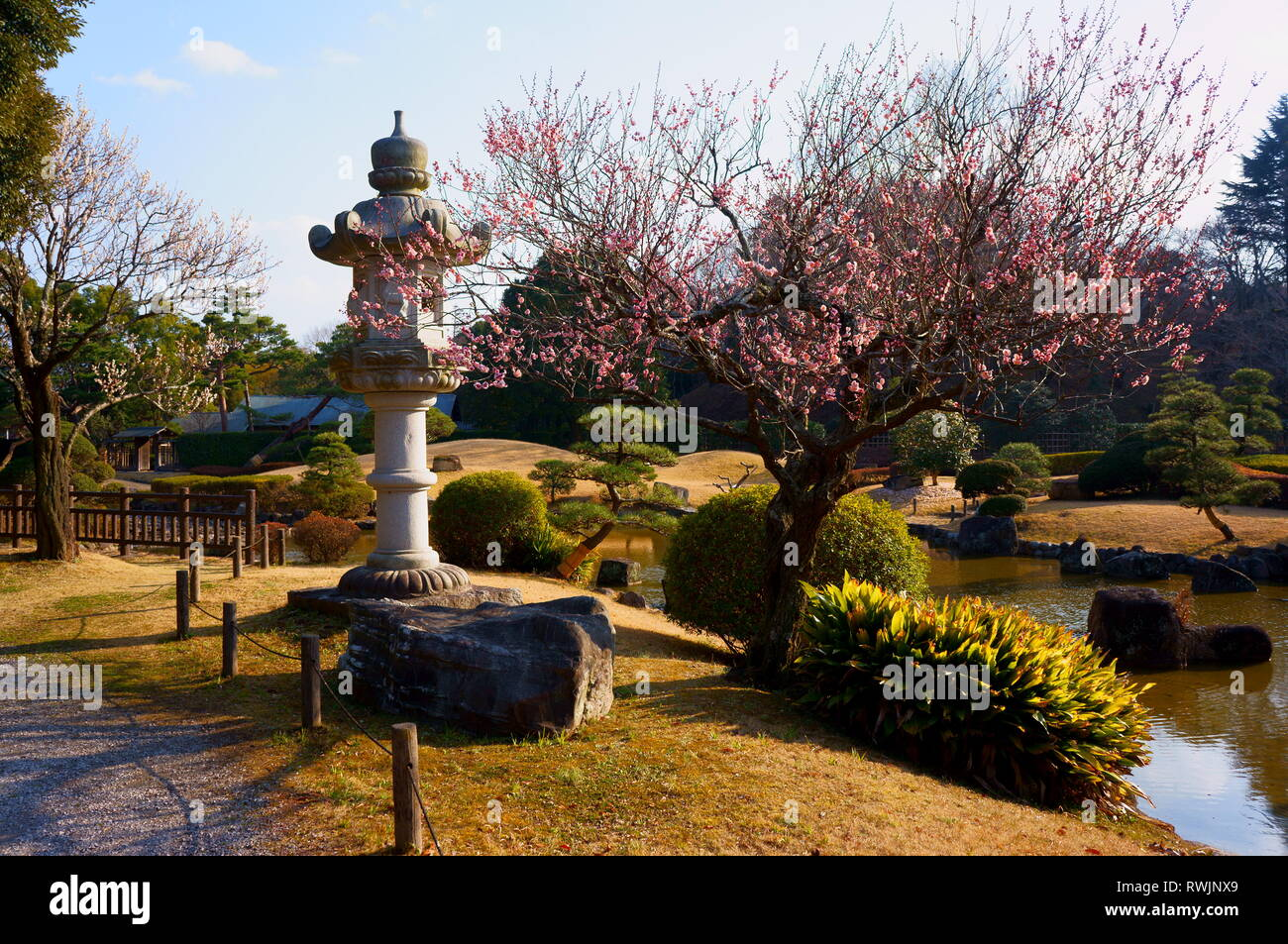 Abiko High Resolution Stock Photography And Images Alamy
