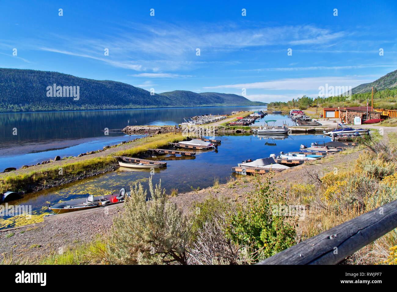 Bowery Haven Marina & RV Resort, Fish Lake,  Aspen forest, Pando Clone, Fishlake National Forest, Wasatch Mountains. - Stock Image