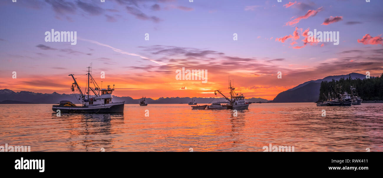 Seiners anchored in Amalga Harbor at sunset awaiting a commercial salmon opening, Southeast Alaska; Juneau, Alaska, United States of America - Stock Image