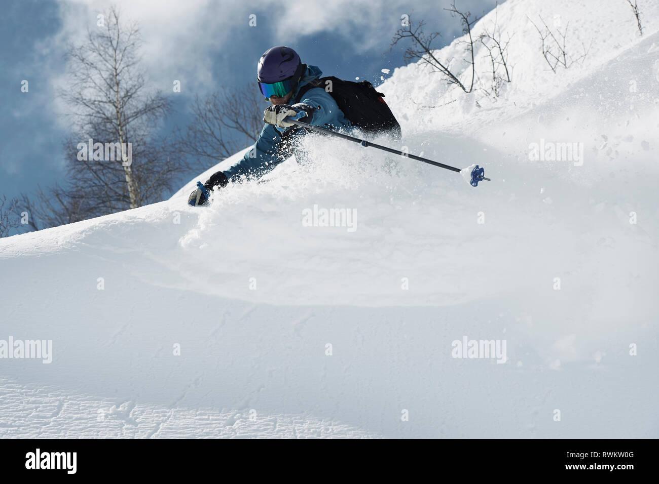 Male skier skiing on powder snow, Alpe-d'Huez, Rhone-Alpes, France - Stock Image