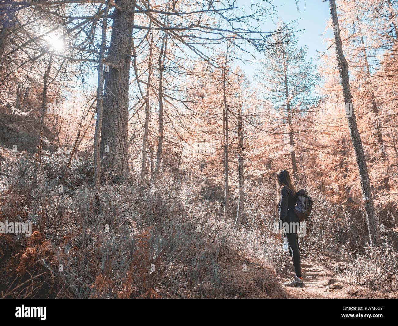 Woman exploring forest, Antronapiana, Piemonte, Italy Stock Photo