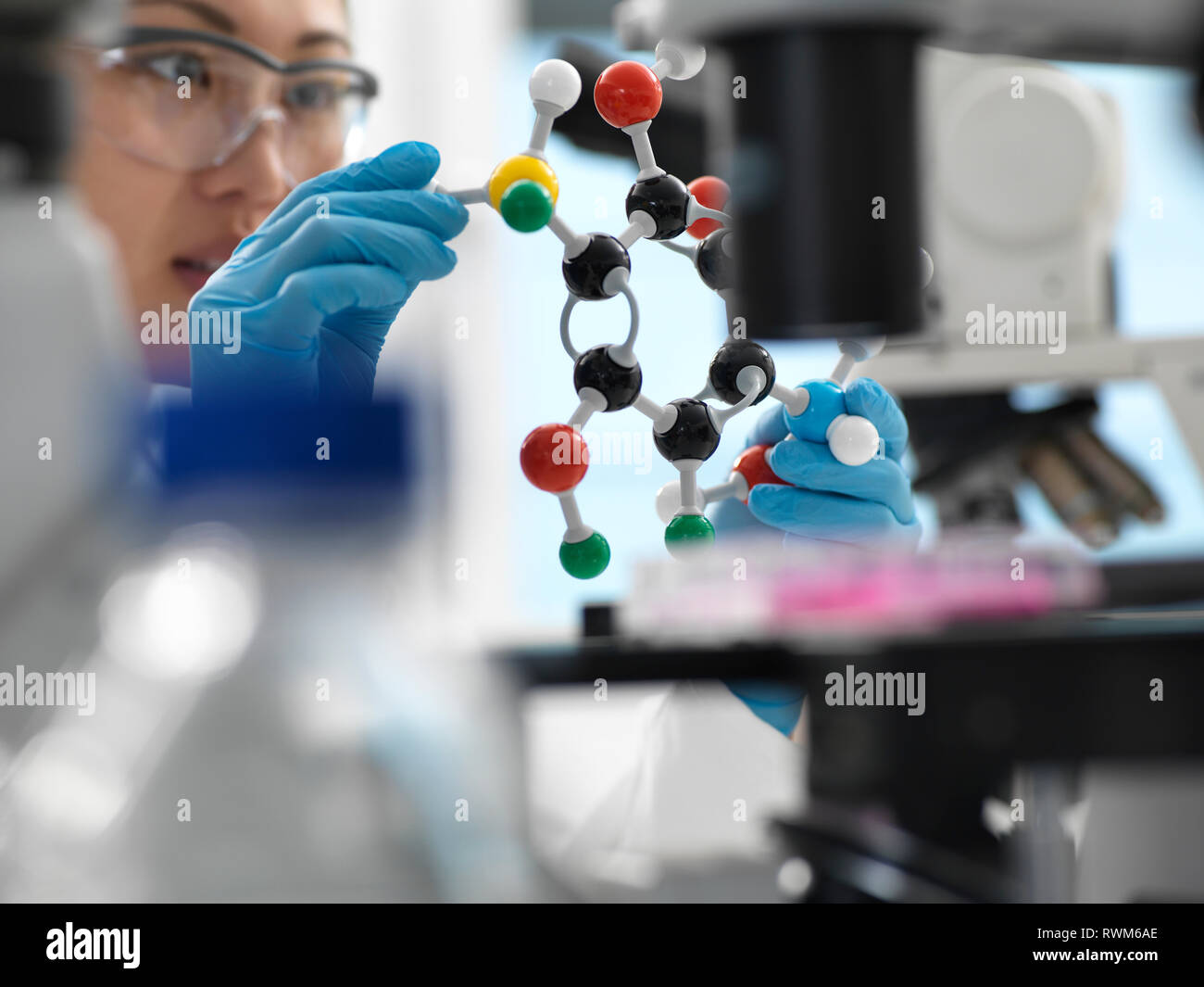 Scientist designing drug formula using ball and stick molecular model in laboratory - Stock Image