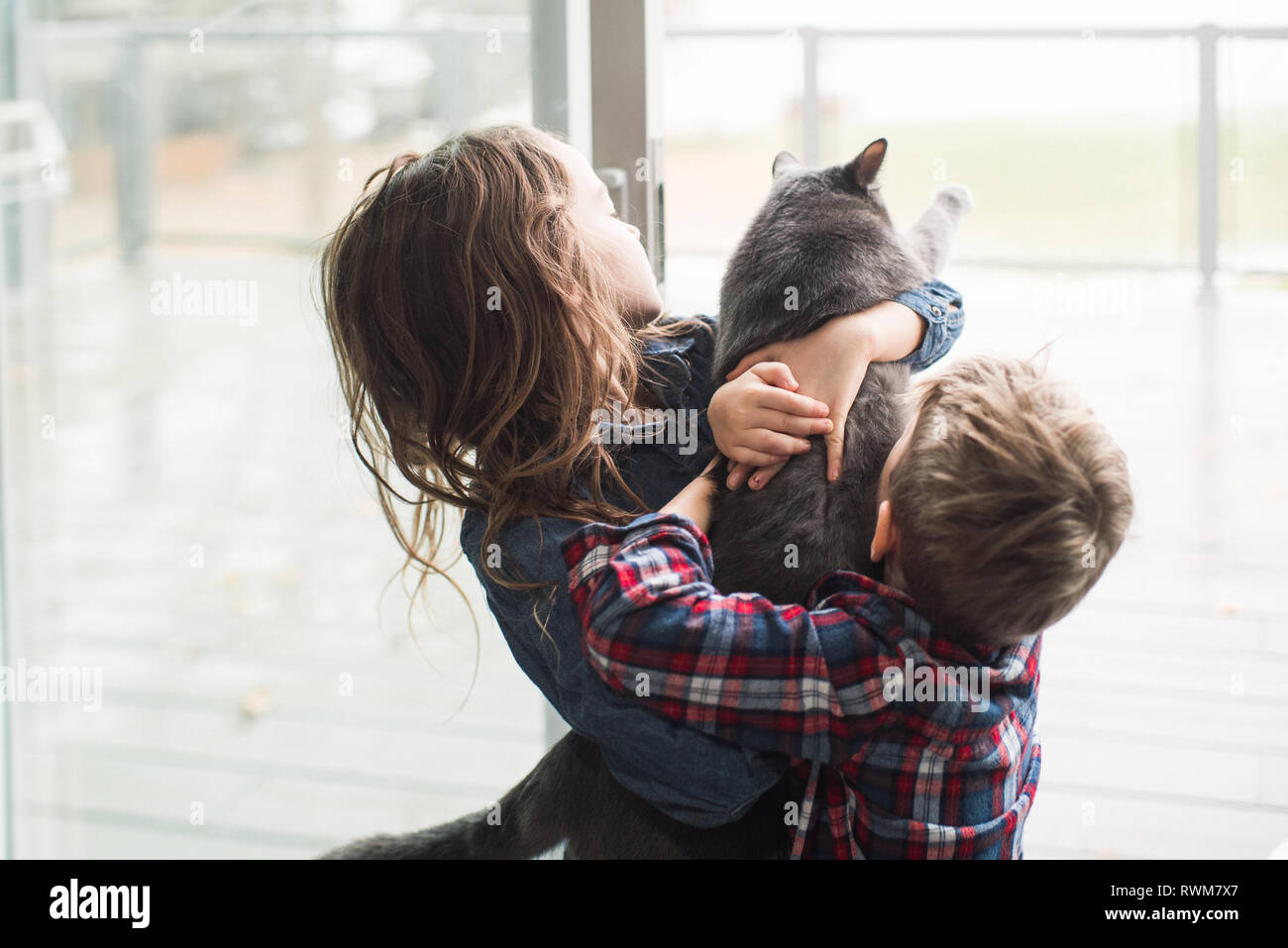 Children playing with cat at home Stock Photo