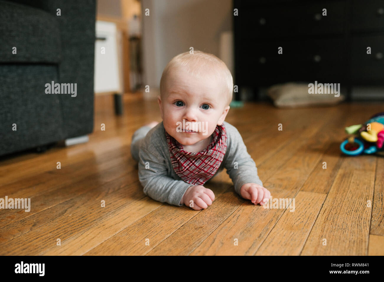 Baby boy crawling on wooden floor Stock Photo