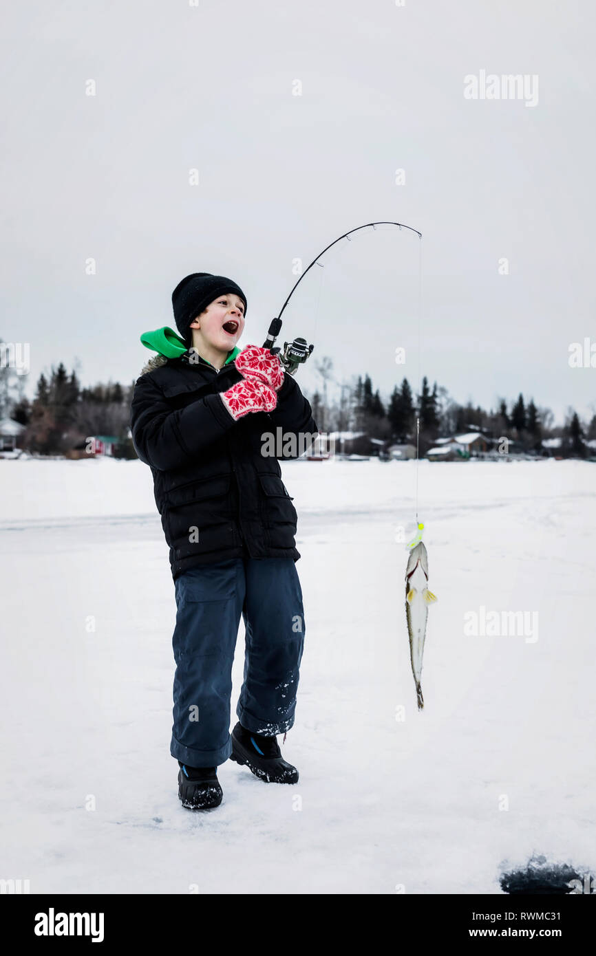 A young boy catching a Walleye while ice fishing on Lake Wabamum during a winter family outing; Wabamun, Alberta, Canada Stock Photo