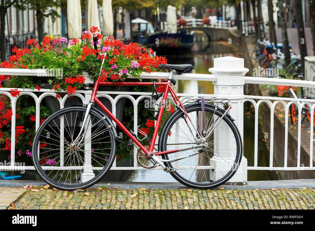 Bike along white metal railing on stone bridge with colourful flowers in box and canal in the background below; Delft, South Holland, Netherlands Stock Photo