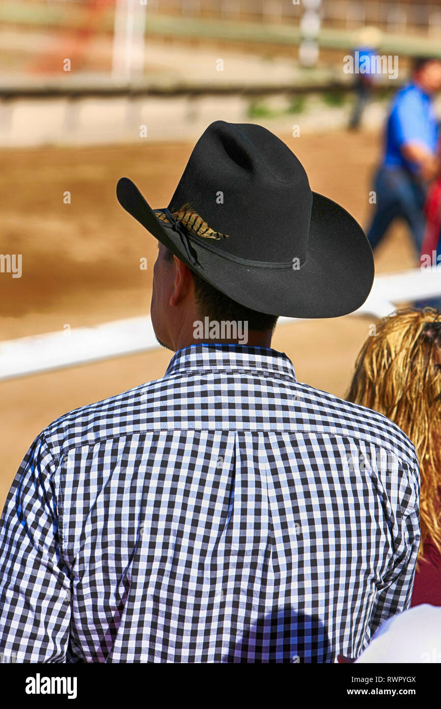 bb415534 Man wearing a stetson hat at the Rillito Park horse racing track in Tucson,  AZ