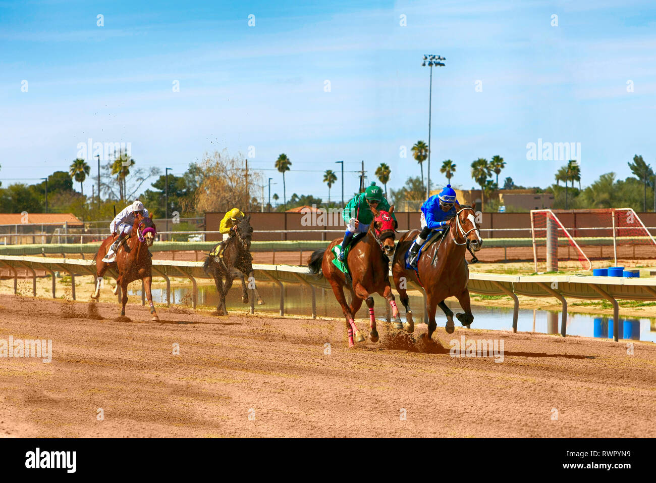 Horse racing at the Rillito Park race track in Tucson AZ - Stock Image