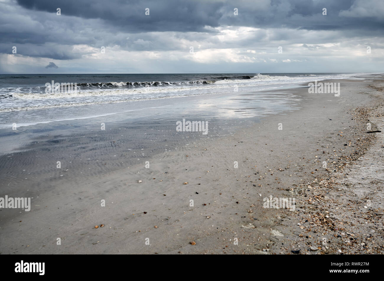Pacific Ocean and sandy coast with rare shells Stock Photo