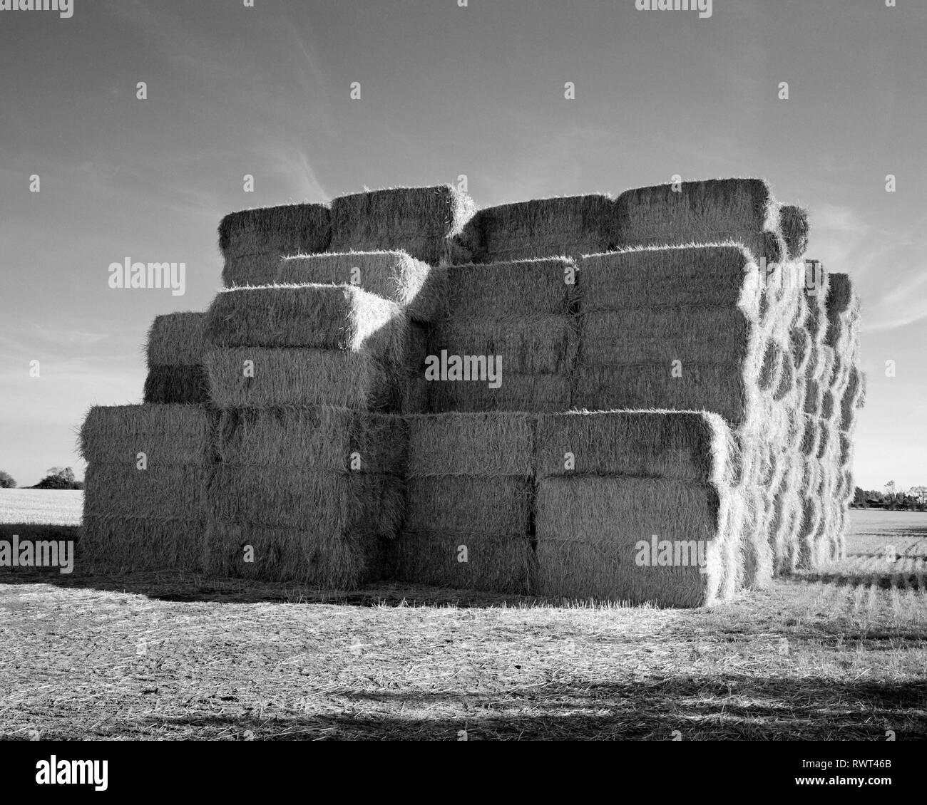 Lop-sided strawstack near Gamlingay Cambridgeshire England - Stock Image