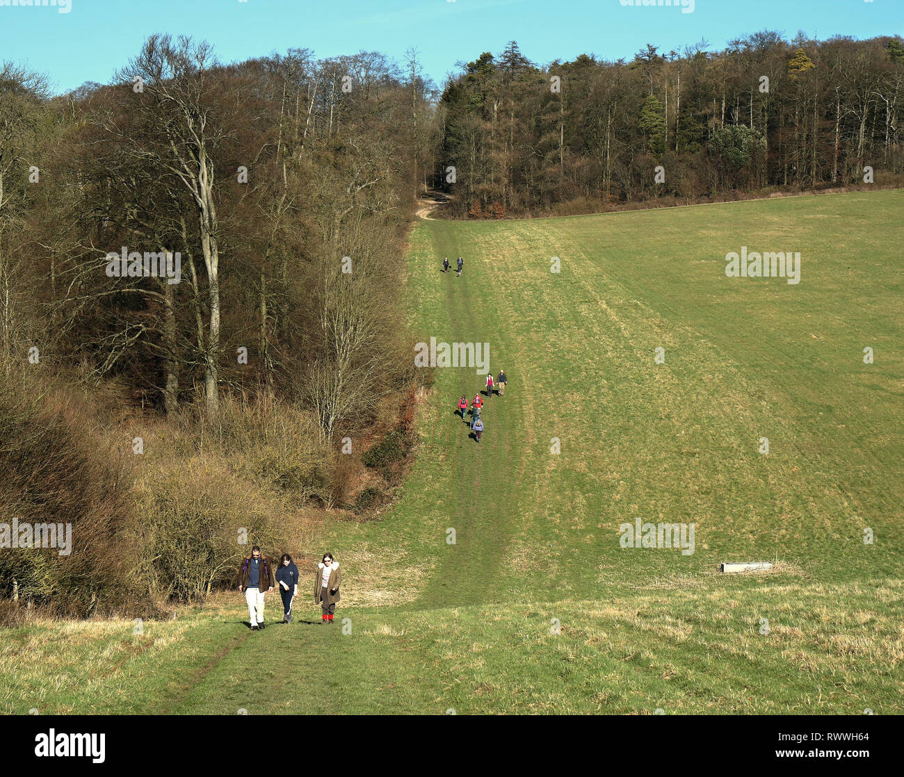Ramblers on an English Rural Track in the Chiltern Hills in South Oxfordshire - Stock Image