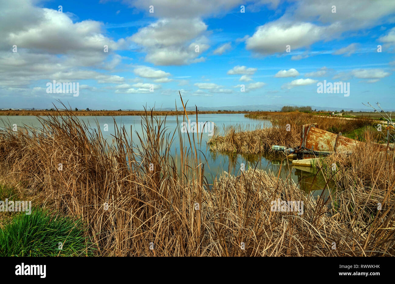 Wide open spaces, lakes and reed-beds, The Ebro Delta nature reserve, near Amposta, Catalunya, Spain Stock Photo