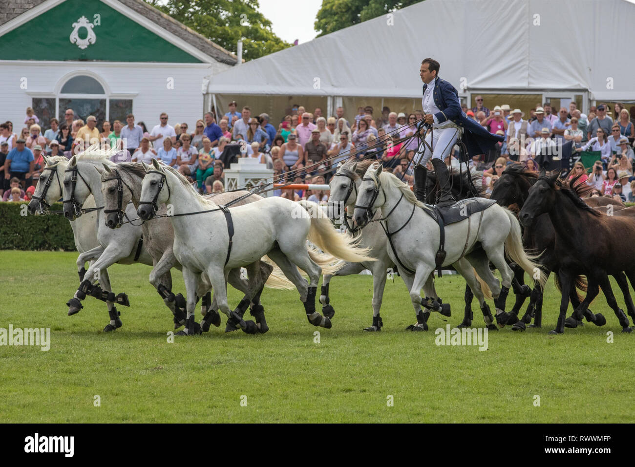 Harrogate, North Yorkshire, UK - July 12th, 2018: French horse trainer Lorenzo performing with his Horses at the Great Yorkshire Show on 12th July 201 - Stock Image