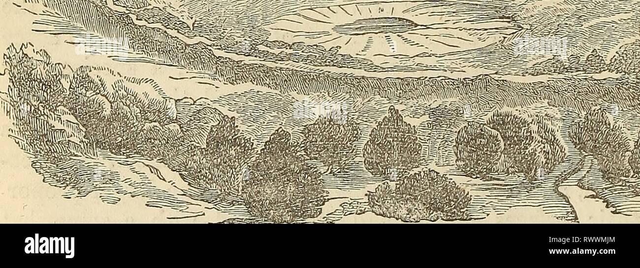carbon dating fossils nøjagtighed
