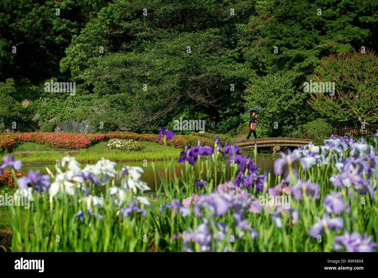 Gardens of the Imperial Palace map in Tokyo city, Japan Stock Photo