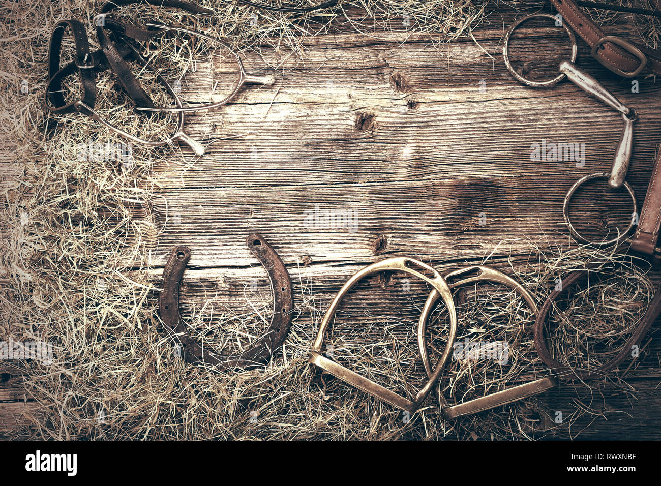 Horse equipments on wooden background with empty space for text, close up vintage view - Stock Image