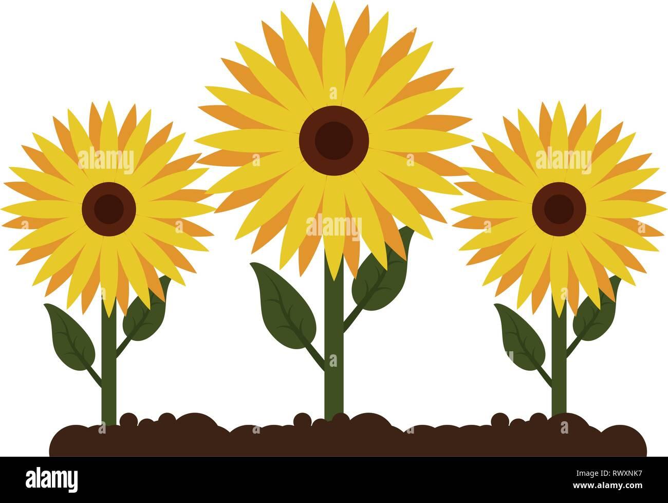 Sunflowers Gardening Cartoon Isolated Stock Vector Image Art Alamy
