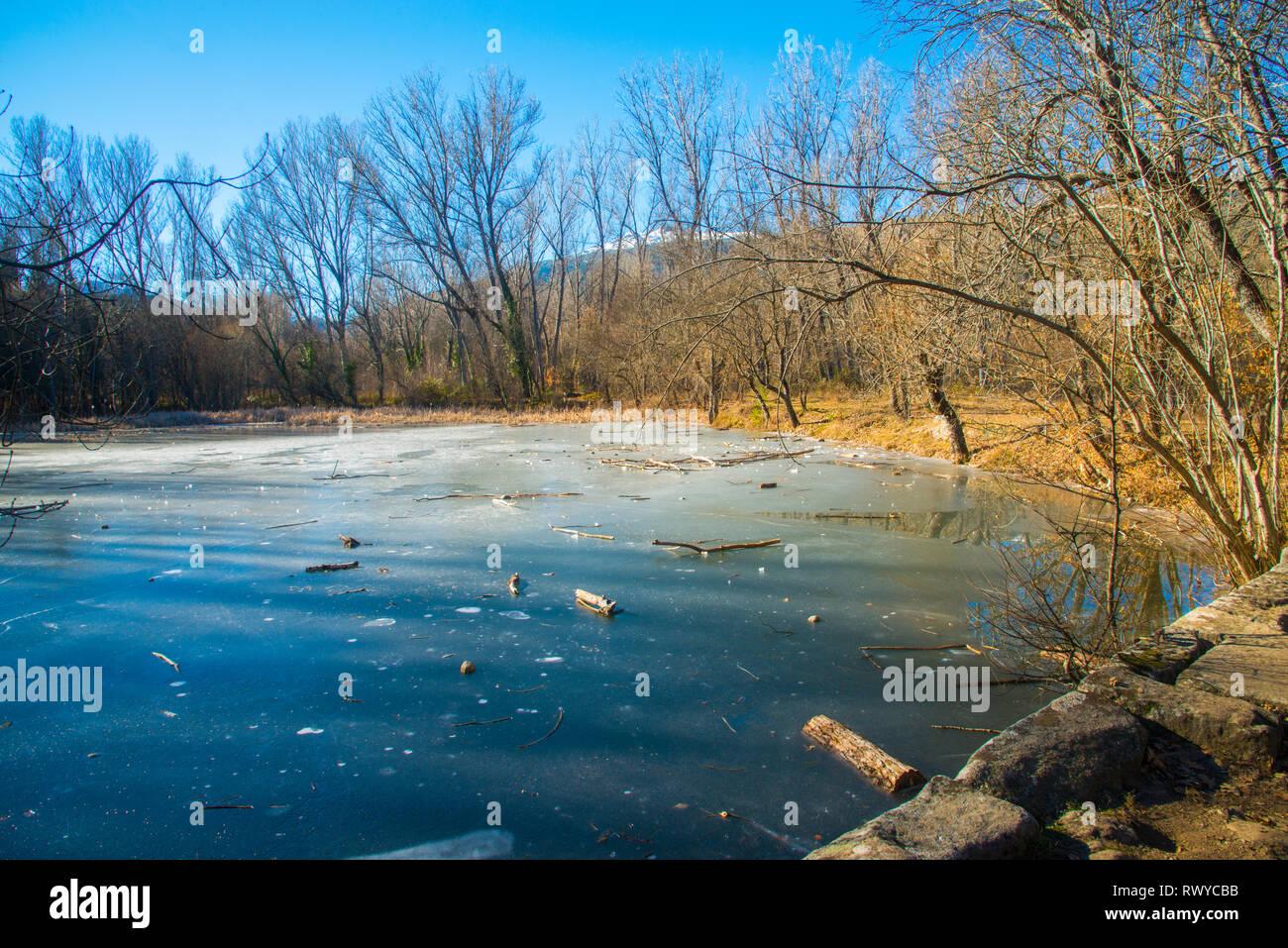 Frozen pond. Finnish Forest, Rascafria, Madrid province, Spain. - Stock Image