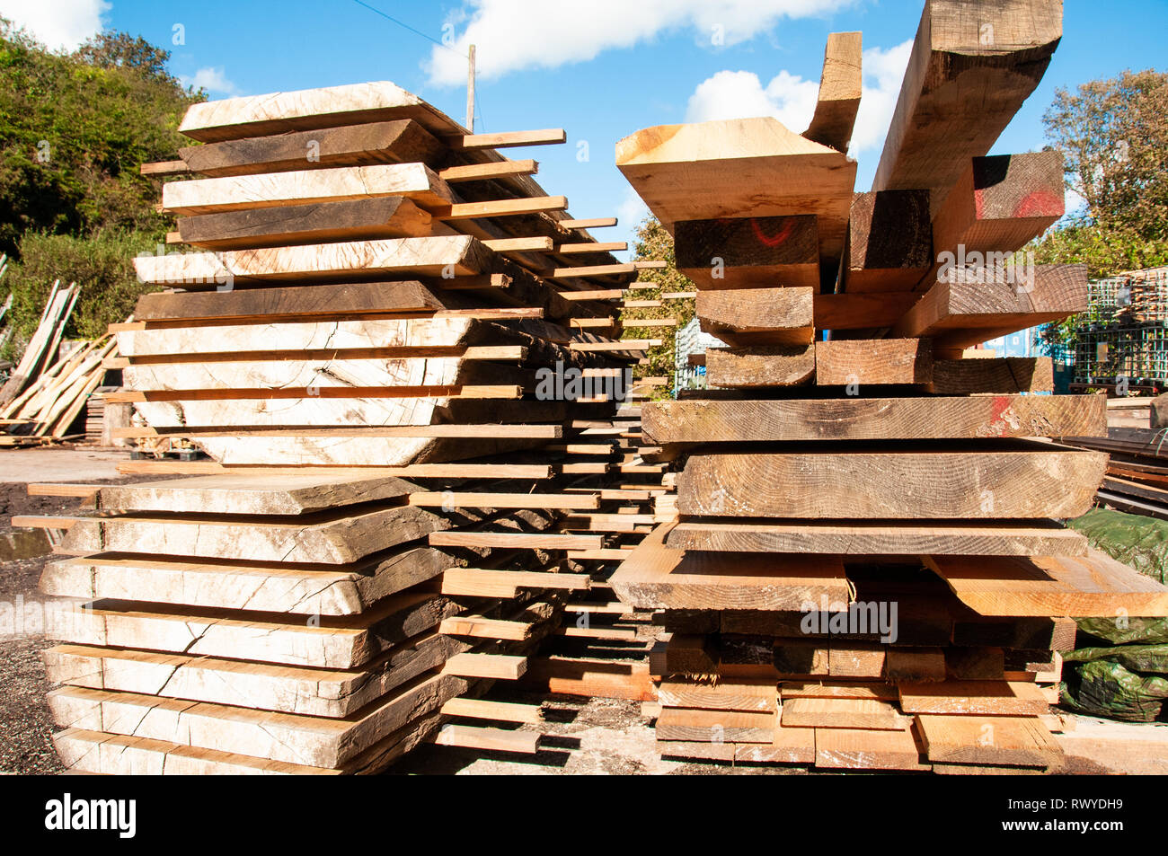 Lengths of timber stacked in yard - Stock Image