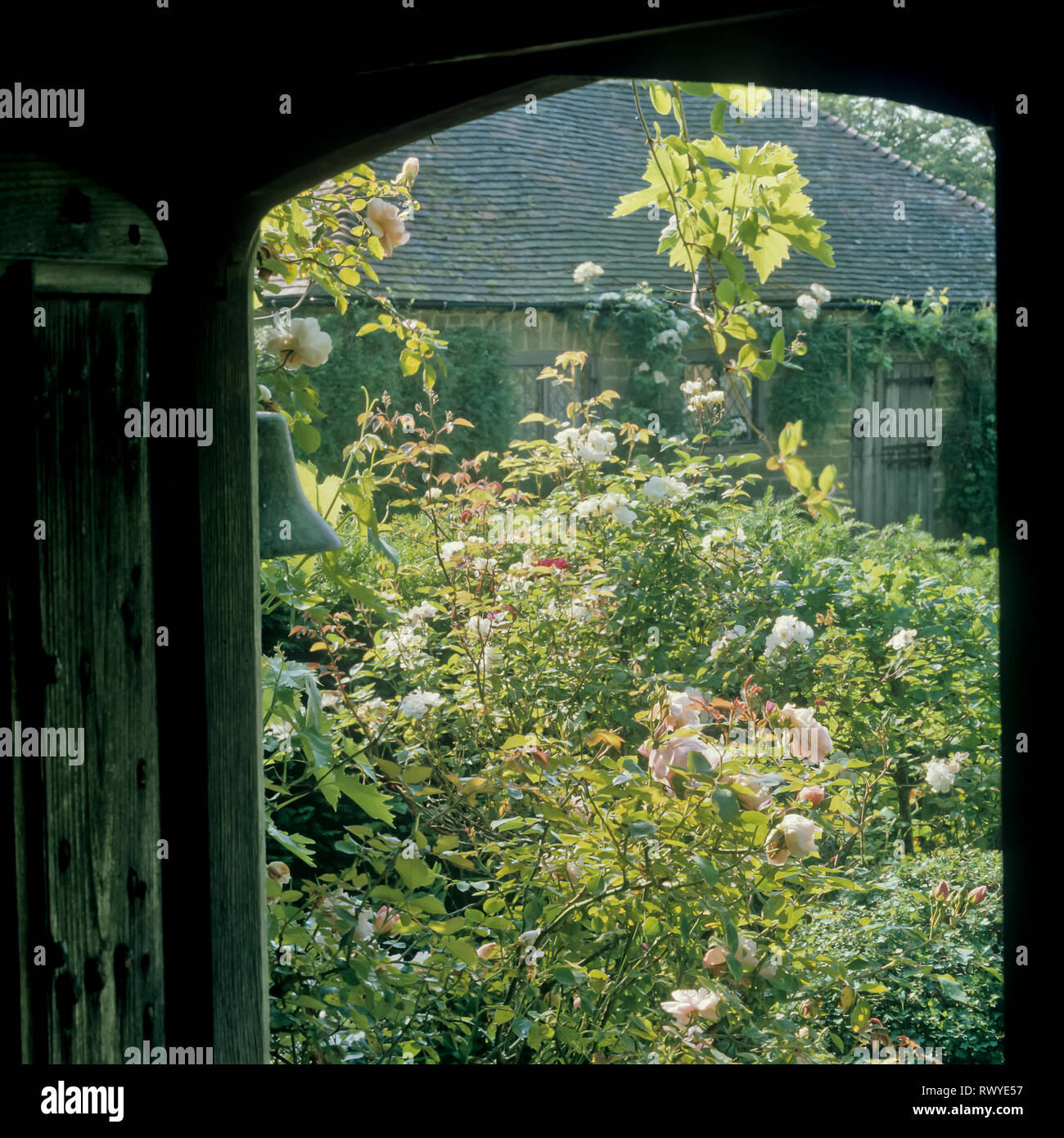 Doorway to flower garden - Stock Image