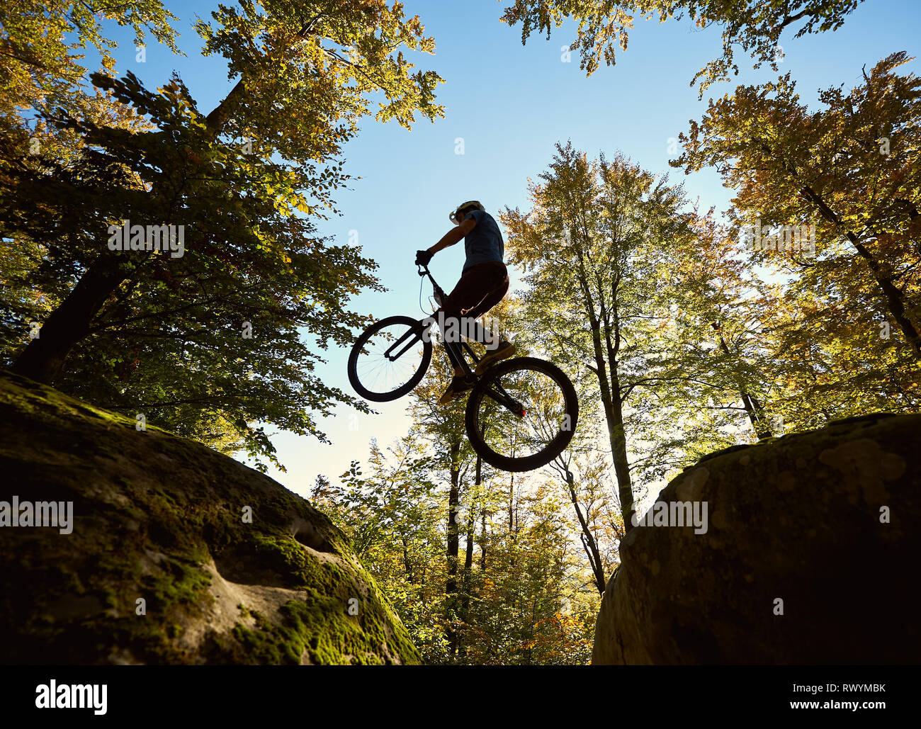 Young male biker jumping on trial bicycle between two big boulders, professional rider making acrobatic trick in the forest on sunny day. Concept of extreme sport active lifestyle Stock Photo