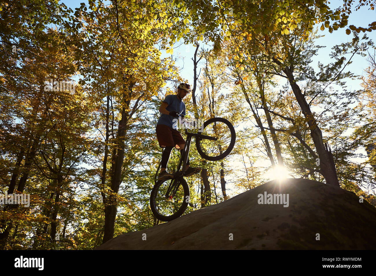 Silhouette of professional cyclist standing on back wheel on trial bicycle, sportsman rider balancing on the edge of big boulder in the forest. Concept of extreme sport active lifestyle Stock Photo