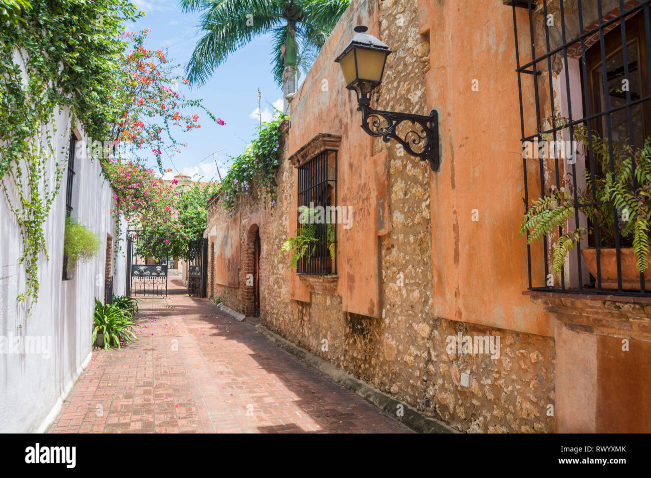 The Callejón de los Curas. It is a tiny passage, barely a splendid block paved with bricks that shaded by the leaves of a generous and ornamented mang - Stock Image