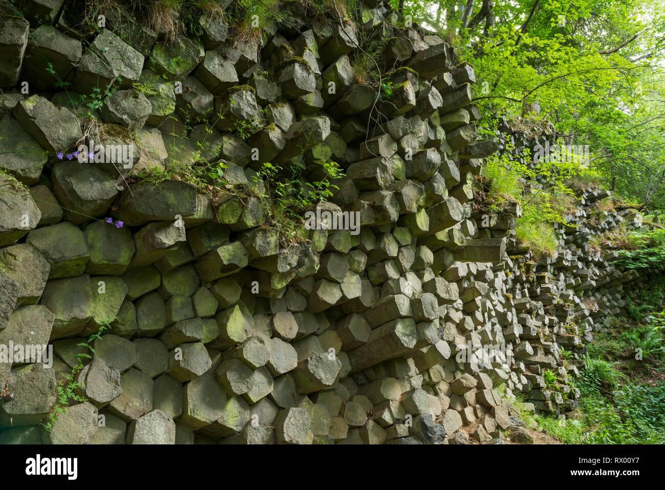 Basalt prisms, Gangolfsberg, Rhön Biosphere Reserve, Bavaria, Germany Stock Photo