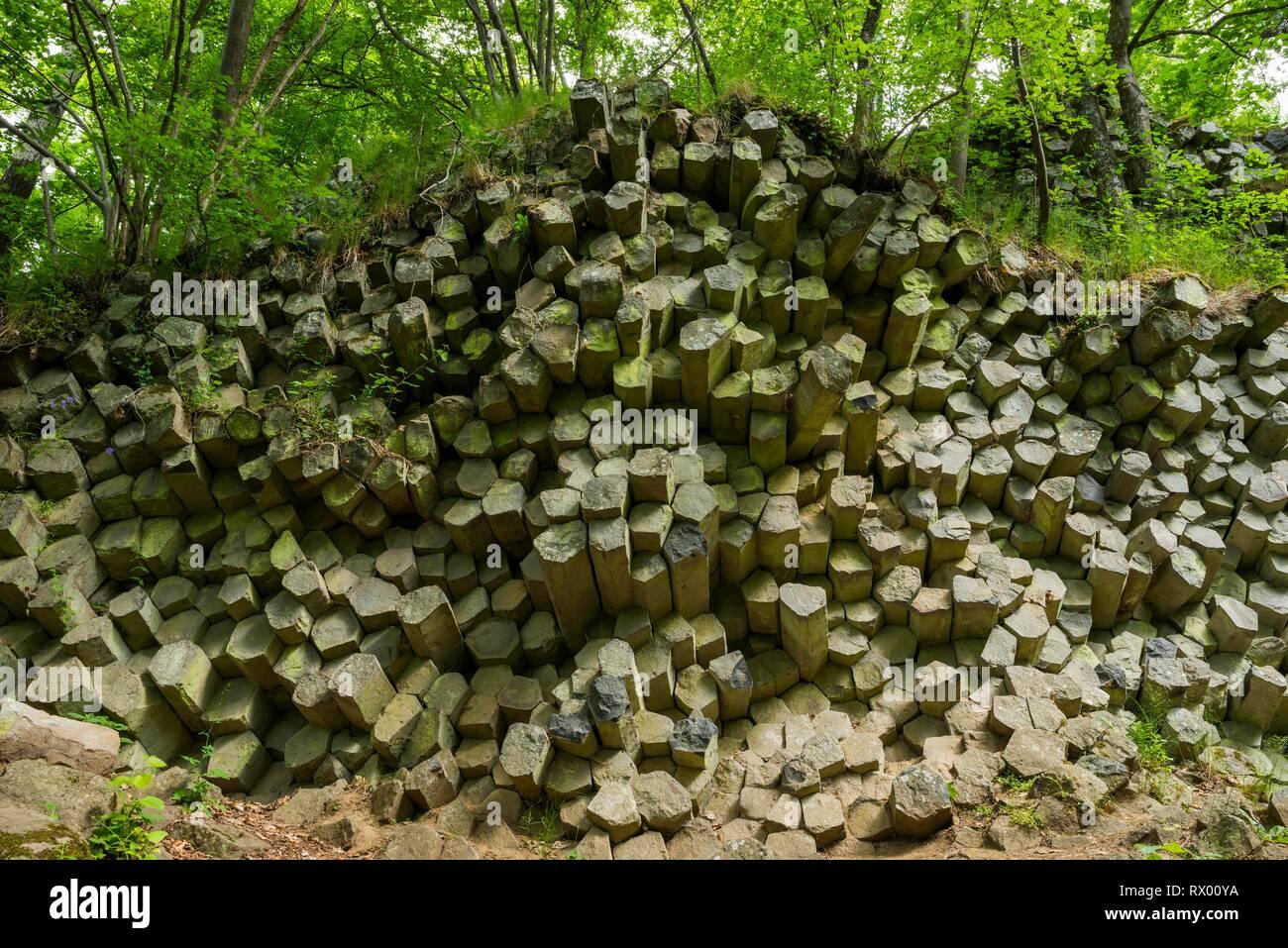 Basalt prisms, Gangolfsberg, Rhön Biosphere Reserve, Bavaria, Germany - Stock Image