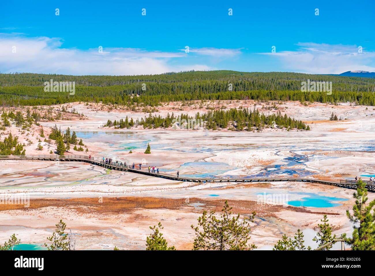 Geysers and hot springs, mineral deposits, view of Norris Back Basin with trail for tourists, Noris Geyser Basin - Stock Image