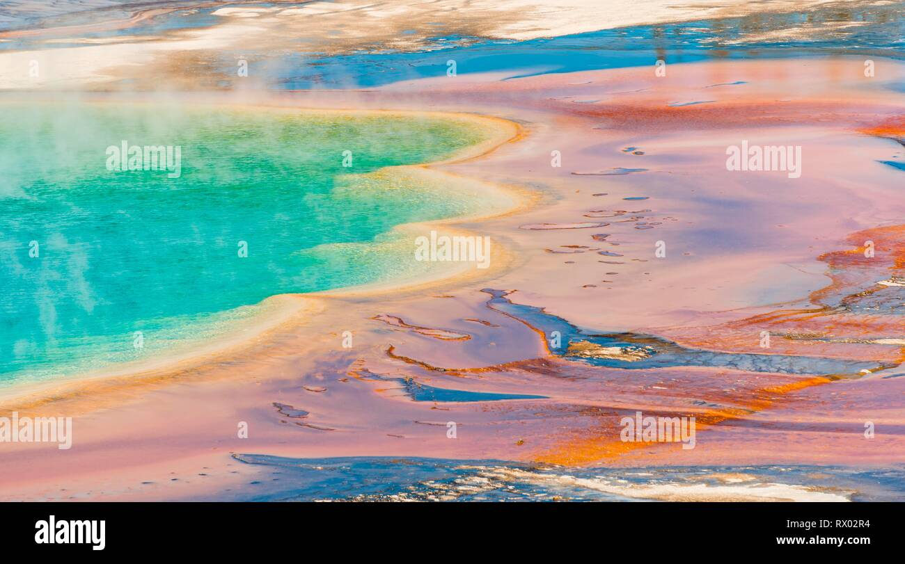 Colored mineral deposits at the edge sr steaming hot spring, detail photo, Grand Prismatic Spring, Midway Geyser Basin Stock Photo