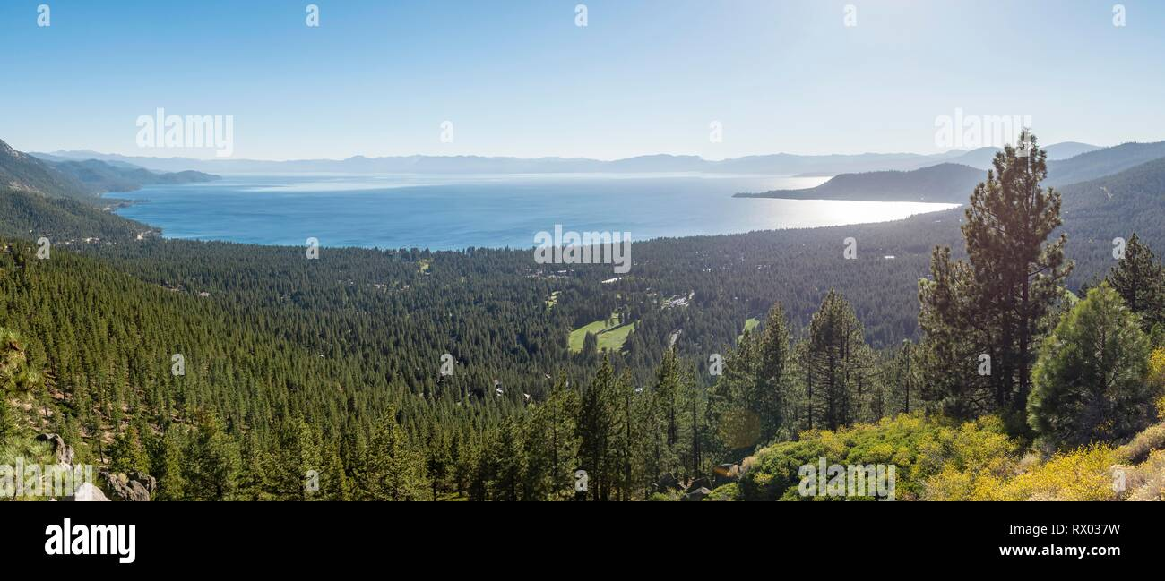 View to Lake Tahoe, surrounded by forest, California, USA - Stock Image