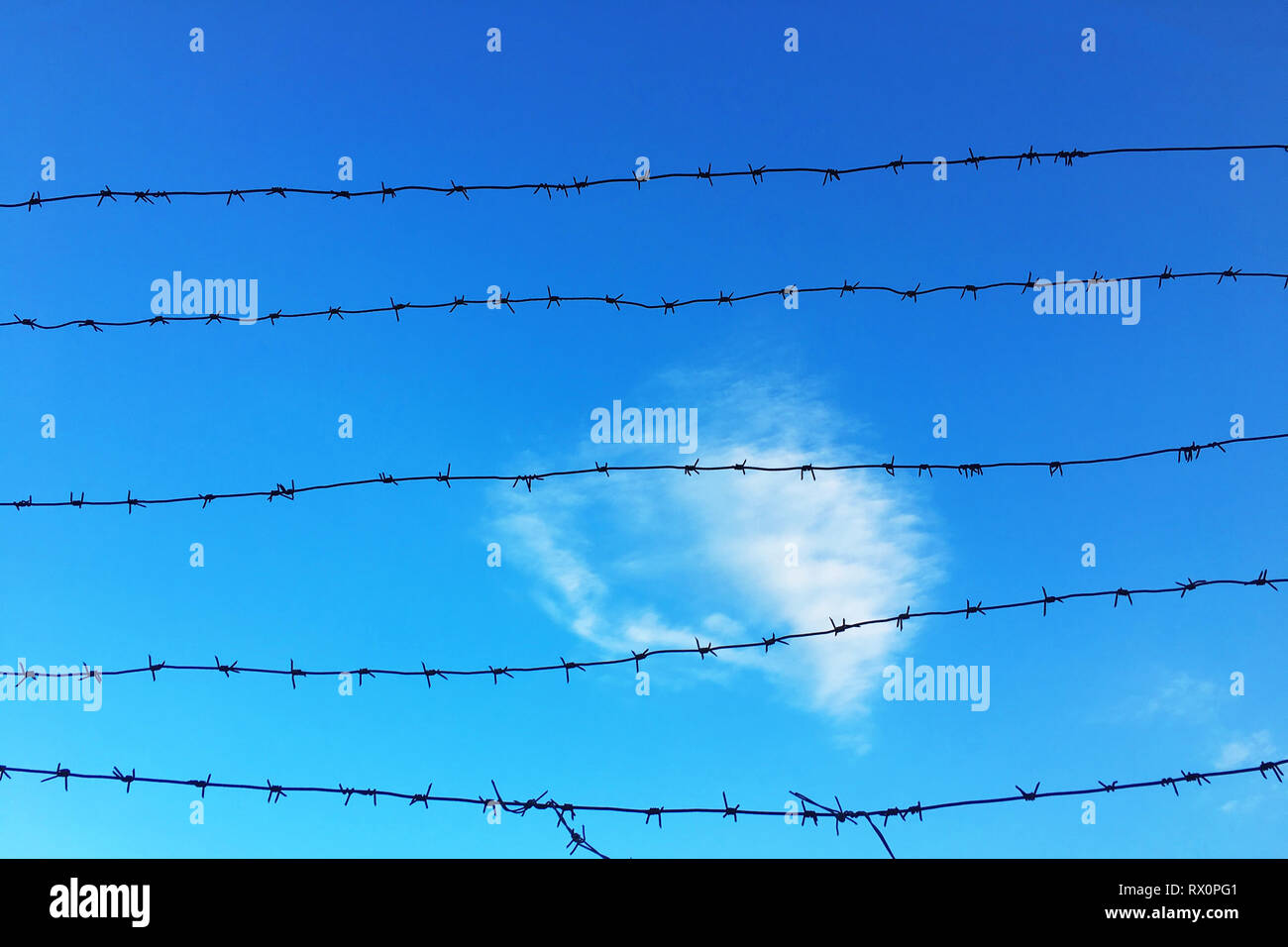 Wire mesh fence and a restricted area sign with blue sky background - Stock Image