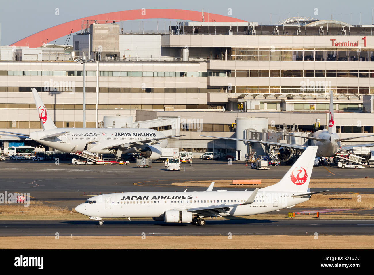 A Japan Airlines (JAL) 737-846 landing in front of Terminal 1 at Haneda International Airport, Tokyo, Japan. Friday February 1st 2019 - Stock Image