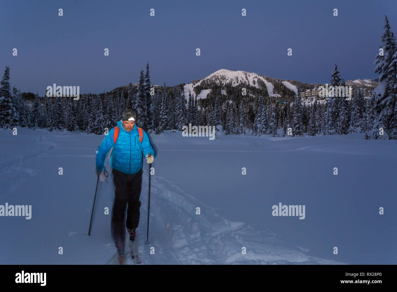 A back country skier works his way through Paradise Meadows at night, Mt. Washington in the background.  The Comox Valley, Vancouver Island, British C - Stock Image