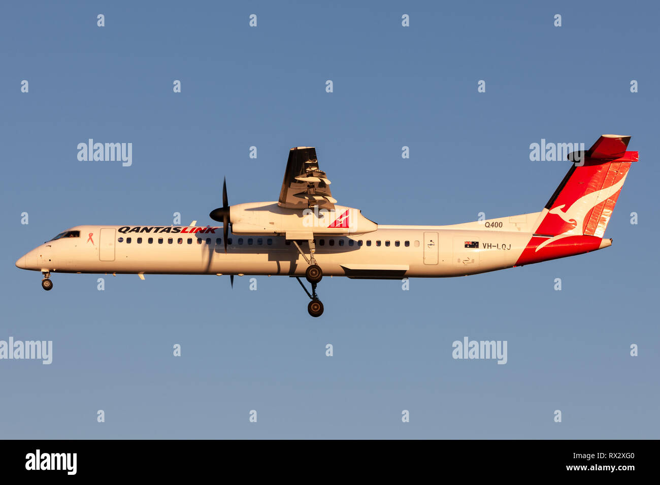 QantasLink (Sunstate airlines) Bombardier DHC-8-402 twin engine turboprop regional airliner on approach to land at Adelaide Airport. Stock Photo