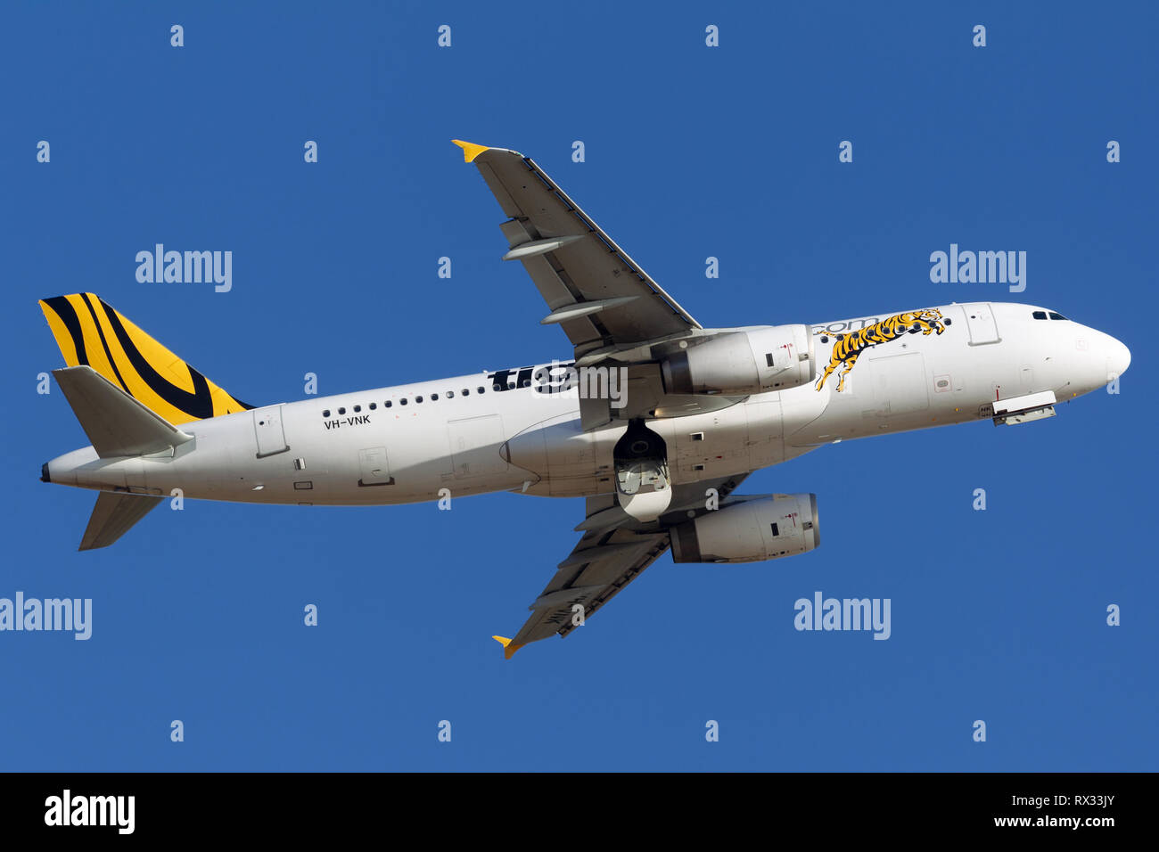 Tiger Airways Airbus A320 airliner taking off from Adelaide Airport. - Stock Image
