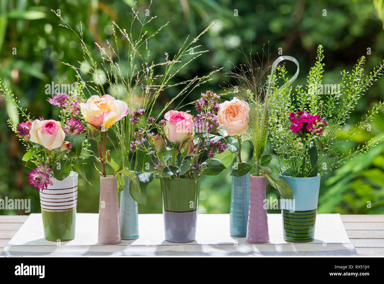 botany, multi-coloured single flower in vase, No-Postcard-Use in German speaking countries! - Stock Image