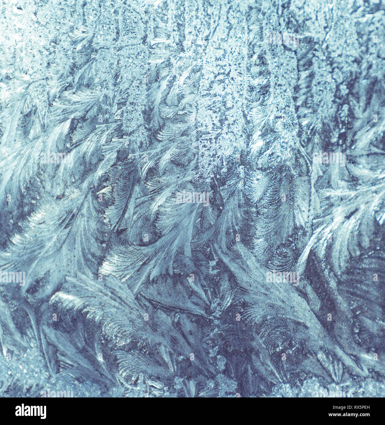 Frostwork. Decorative ice crystals on a window - Stock Image